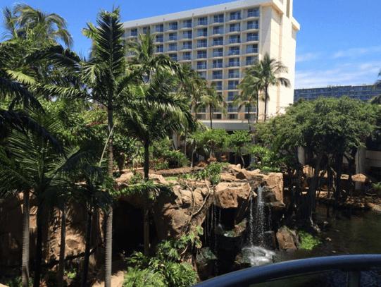Hawaii Success Story Paul - 2