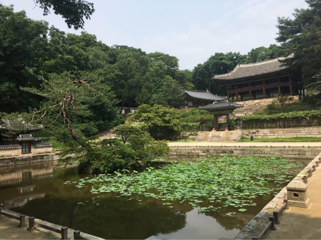 Visit the Secret Garden of Changdeokgung
