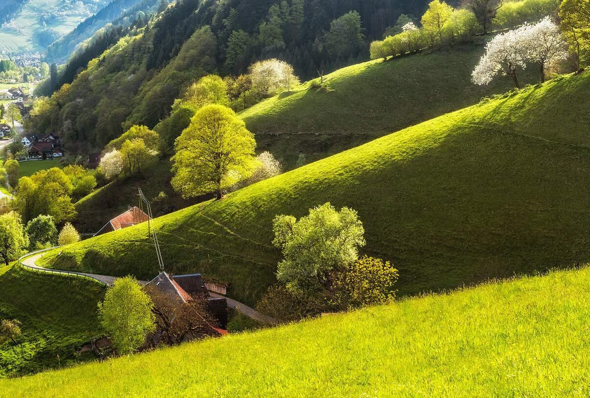 Black Forest Schwarzwald Baden-Württemberg Germany