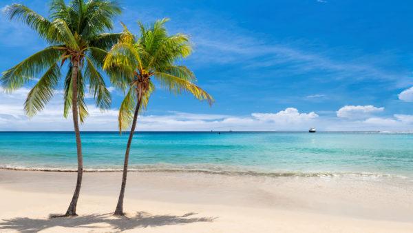 Caribbean sea on Jamaica