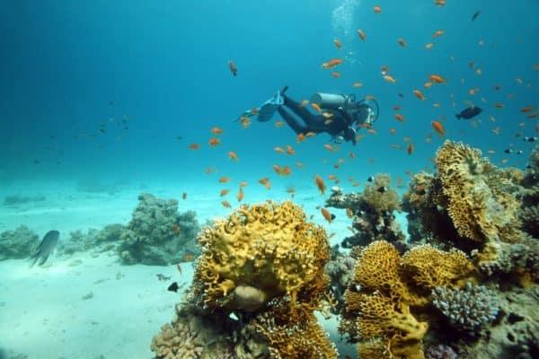 Sharm El Sheikh in the Red Sea