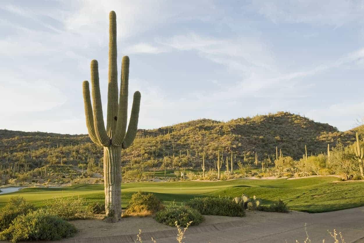 Dove Mountain, Tucson, Arizona